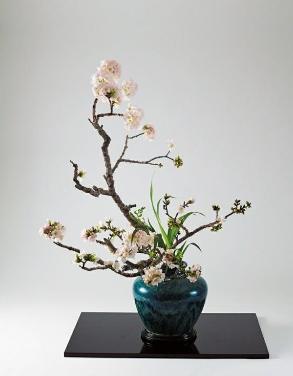 kirschblüten ikebana japanische blumensteckkunst