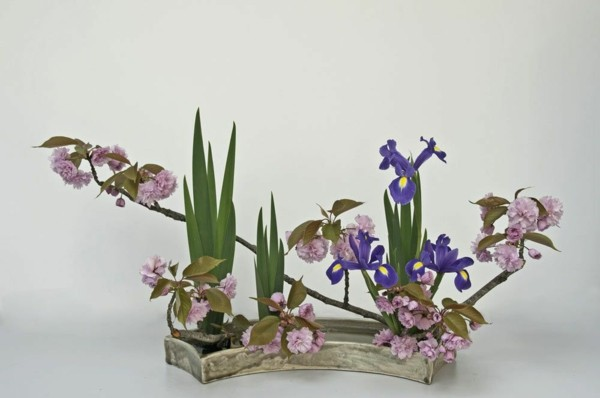 kirschblüten iris japanische blumensteckkunst