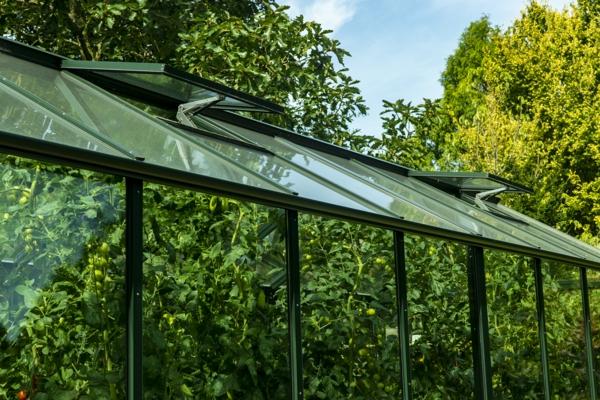 Automatische Fensteröffner lüften im Sommer das Gewächshaus Bio-Varis von Hoklartherm