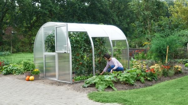 Das Gewächshaus Arcus von Hoklartherm ermöglicht Ernten von allen Seiten