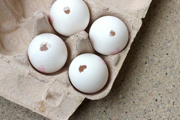 Eier ausblasen abwaschen anstechen auspusten Anleitung
