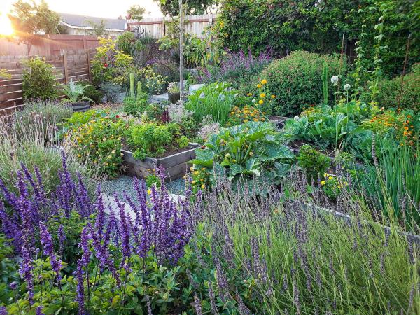Garten Ideen Naturgarten