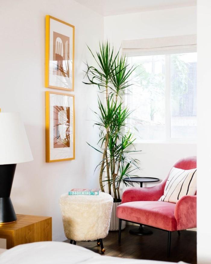 Geheimnisse des Innendesigns enthüllt Samtsessel grüne Zimmerpflanze Ecke zum Relax oder Lesen
