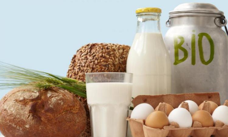 Gesundes und ausgewogenes Essen in Zeiten der Corona-Krise Bio-Produkte Eier Milch selbst gebackenes Brot