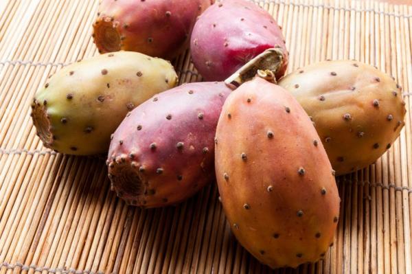 Kaktusfeige essen Kaktusfrucht Feigenkaktus Opuntie