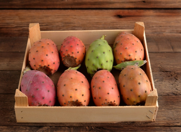 Kaktusfeige essen Kaktusfrucht eine Kiste Feigenkaktus Opuntie