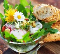 Kulinarische Löwenzahn Anwendung oder was kann man alles mit dem Heilkraut zubereiten?