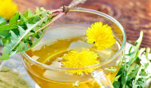Löwenzahn gelbe Blüten Blätter Wurzel Löwenzahntee entgiftet und vitalisiert den Körper