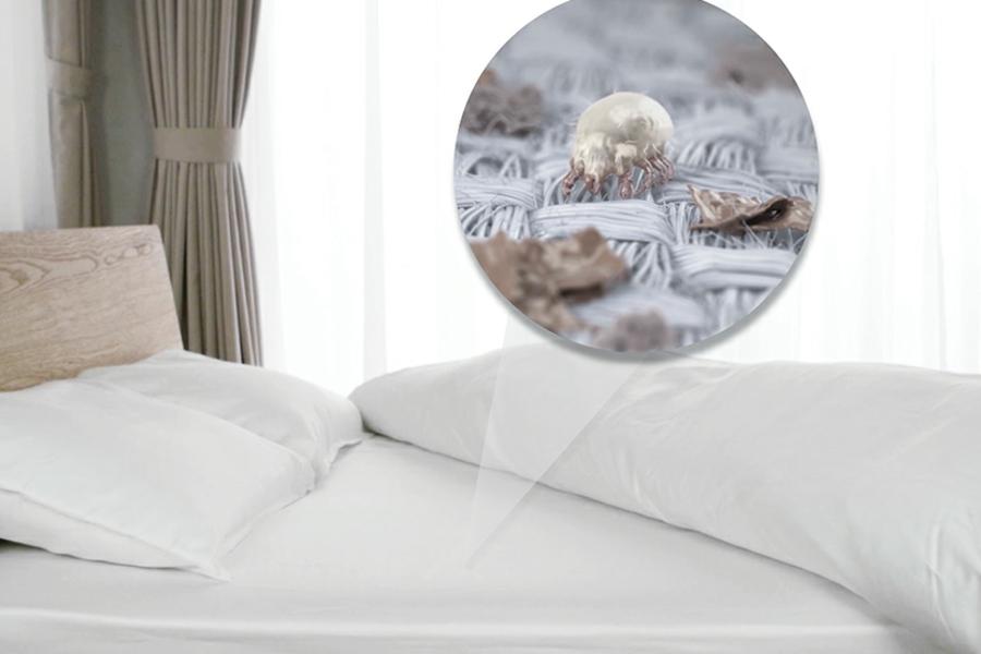 Wie Kann Man Länger Im Bett