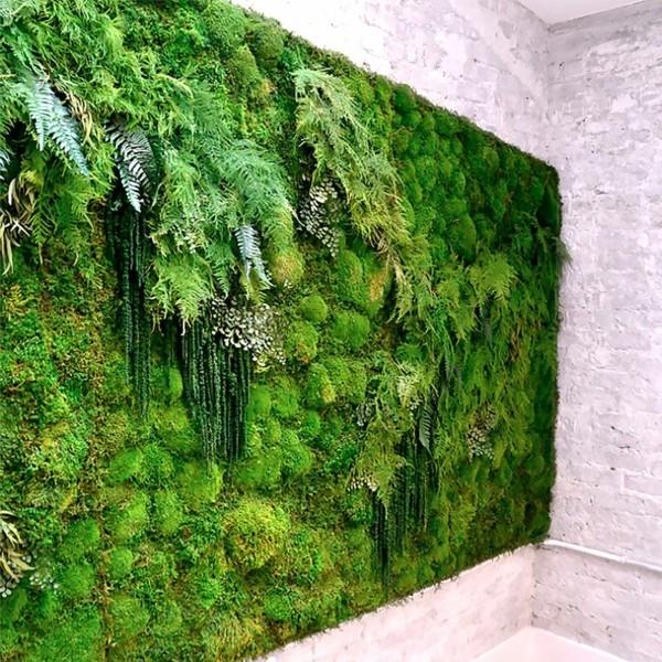 Mooswand Biophilie grüne Wandgestaltung Mooswand Moosarten