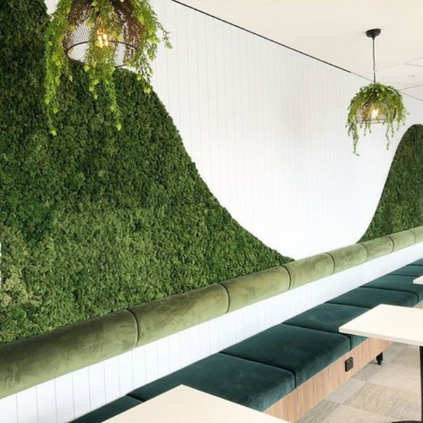 Mooswand Biophilie grüne Wandgestaltung Mooswand selber machen Wellen