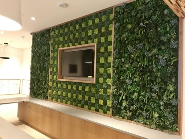 Mooswand Biophilie grüne Wandgestaltung Wohnwand mit Moss