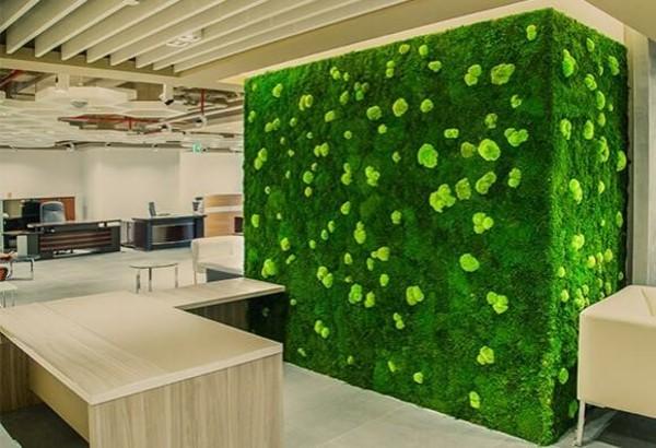 Mooswand selber machen Biophilie Wohntrends umsetzen lebende Wandgestaltung