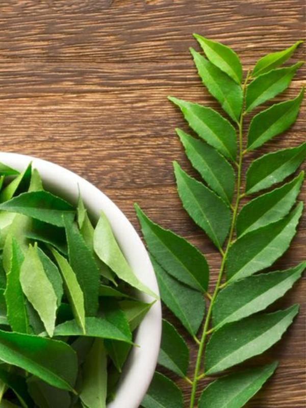 Neemöl Neembaum Blätter gesundheitliche Vorteile