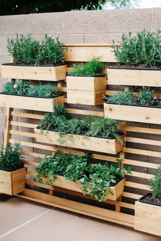 Outdoor - Trends 2020 Grüne Wand Holzwand Holzkästen bepflanzt mit verschiedenen grünen Pflanzen schöner Anblick