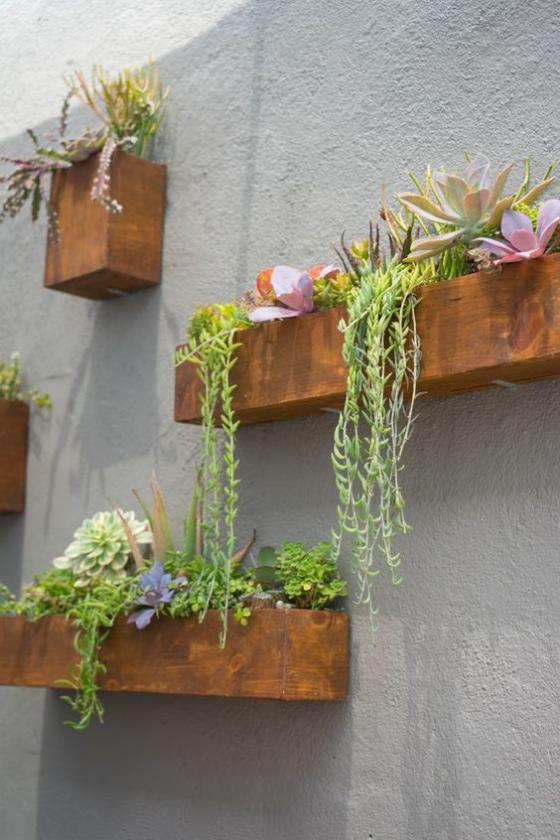 Outdoor - Trends 2020 Grüne Wand Kästen mit Sukkulenten und anderen hängenden Grünpflanzen
