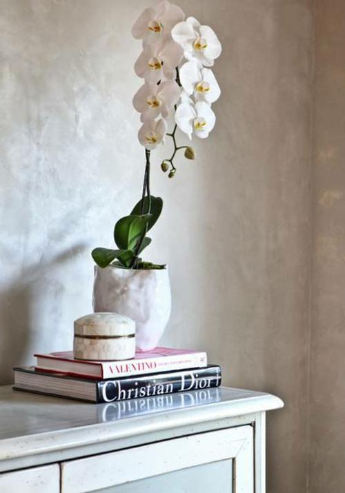 Tischdeko mit Orchideen Hausdekoration mit Topfpflanzen