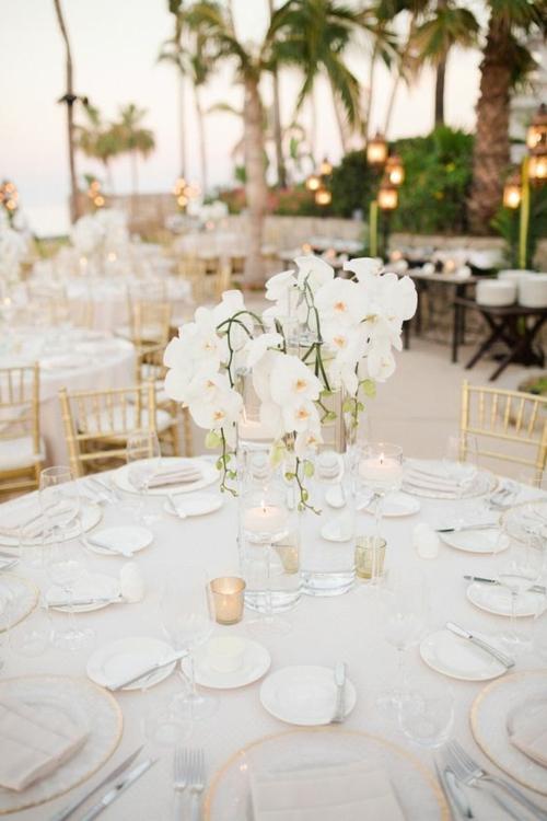 Tischdeko mit Orchideen Hochzeitsdeko Ideen weiße Orchideen