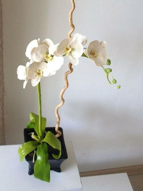 Tischdeko mit Orchideen festliche Hausdekoration