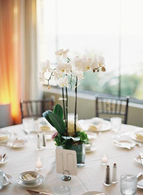 Tischdeko mit Orchideen festliche Tischdekoration Festtag