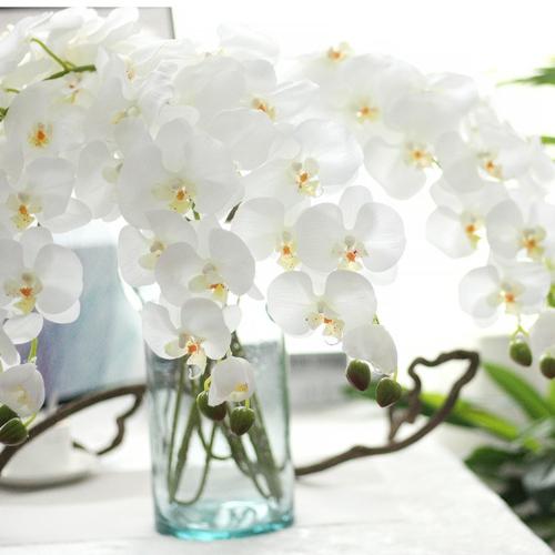 Tischdeko mit Orchideen weiße Orchidee in Vase