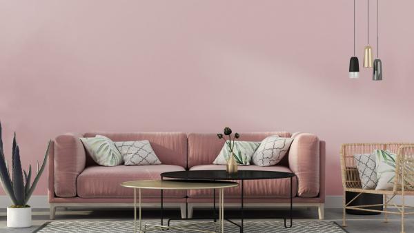ein sofa in der Farbe Rosa wohnideen