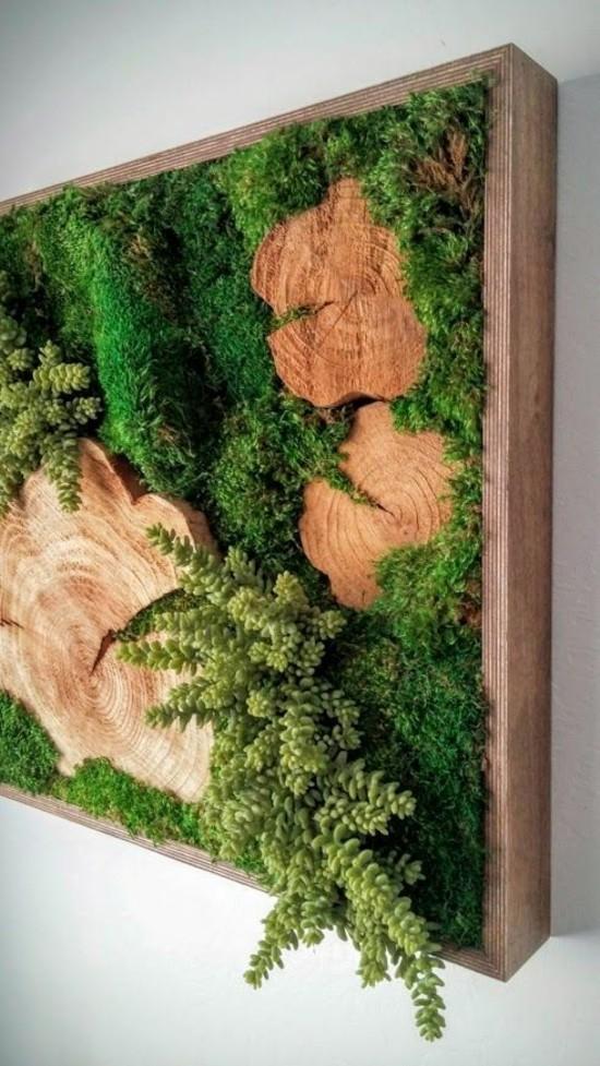 mooswand im rahmen selber machen diy idee wandgestaltung