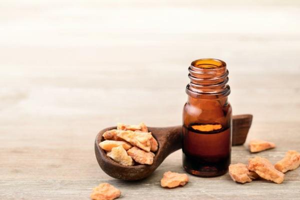 propolis tinktur gesunde wirkung