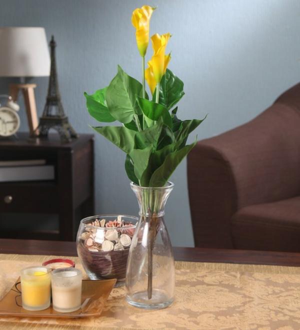 Calla Blume Zimmercalla Calla Pflanze Vase