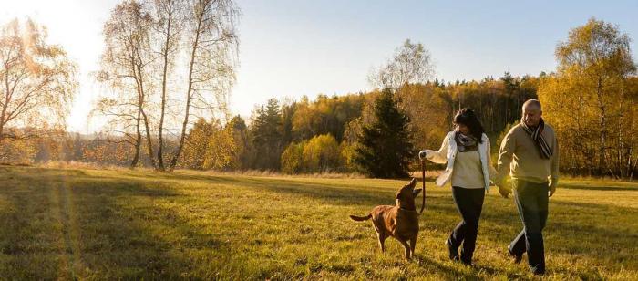 Corona-Krise und Hunde Herrchen Frauchen Hund Spaziergang im Wald auf einer Wiese