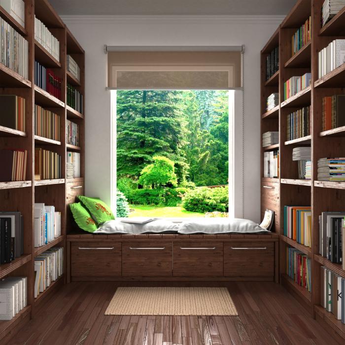 Η κρίση της Κορώνας στο σπίτι τι κάνει η βιβλιοθήκη στο σπίτι πολλά βιβλία στα ράφια άνετη γωνιά ανάγνωσης μπροστά από το παράθυρο