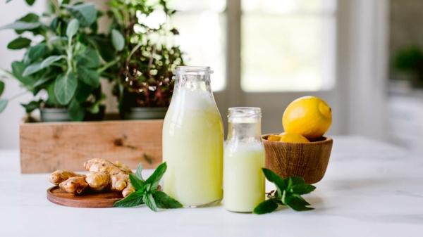 Ingwer Zitronre Shot Rezept gesundheitliche Vorteile
