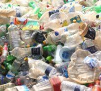 Mutiertes bakterielles Enzym zersetzt Plastikflaschen in Stunden