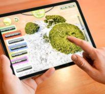 NASA rekrutiert Spieler, um Korallen zu identifizieren und zu kartieren