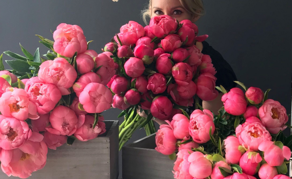 Pfingstrosen - sehr schöne Blumen