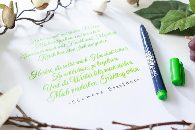 Schönschrift lernen und meistern Grundlagen der Kalligrafie texte gedichte schreiben handlettering