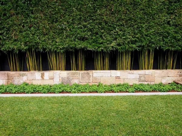 Wiese Garten ideen Gartengestaltung Bambushecke