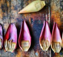 Ist Bananenblüte gesund und wie man diese zubereiten kann