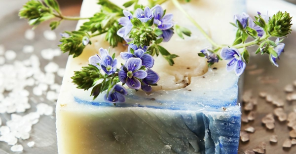 festes shampoo selber machen mit kräutern