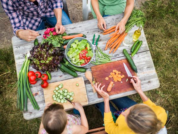 gesunde Ernährung im Garten Abnehmtipps