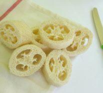 Der Luffa Schwamm – eine Zero Waste Alternative zum Schaumstoffschwämmen in Bad und Küche