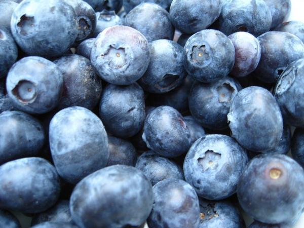 stoffwechsel ankurbeln blaubeeren