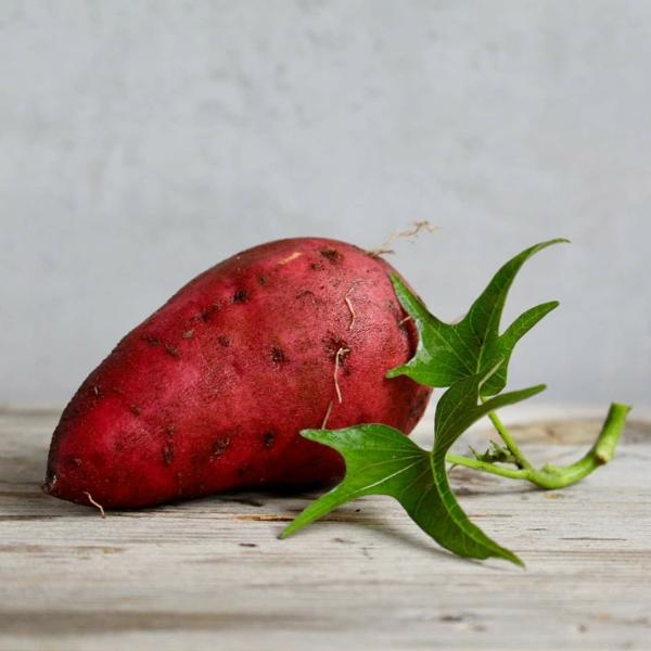 stoffwechsel ankurbeln mit süßkartoffeln