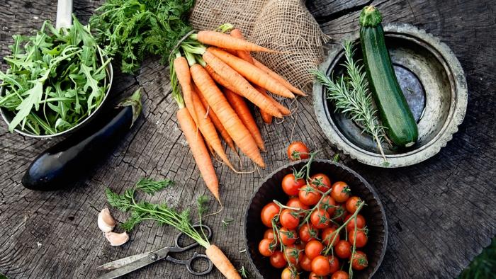 vor Coronavirus schützen Löwenzahnblätter Rosmarin Tomaten Karotten Aubergine Zucchini