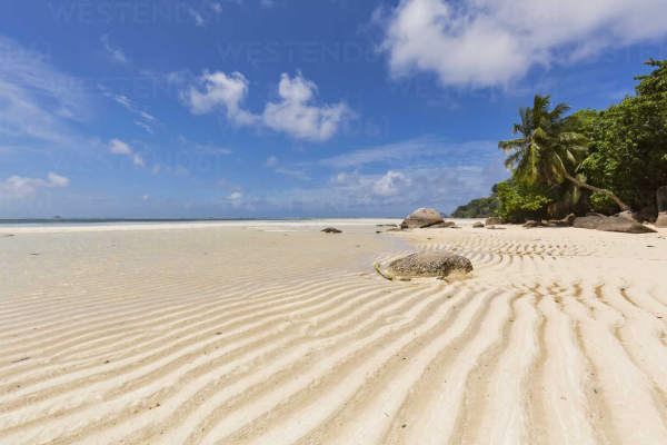 Anse Royale Beach Seychellen weißer Strand Palmen azurblaues Meer