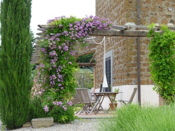 Balkon bepflanzen Lila Pflanzen Ideen