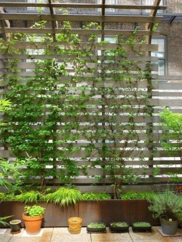 Balkon bepflanzen - grüne Pflanzen Ideen