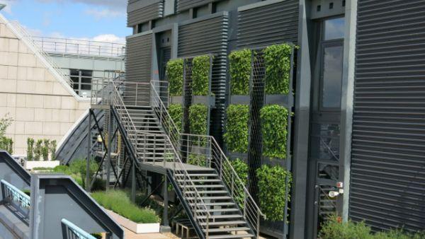 Balkon bepflanzen - moderne Fassadengestaltung