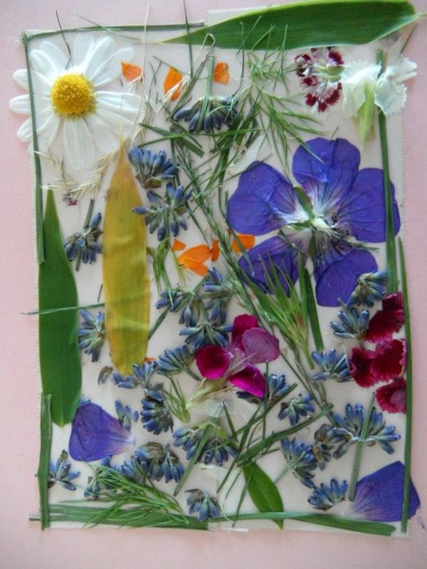 Blumen pressen Blumen arangieren und berahmen