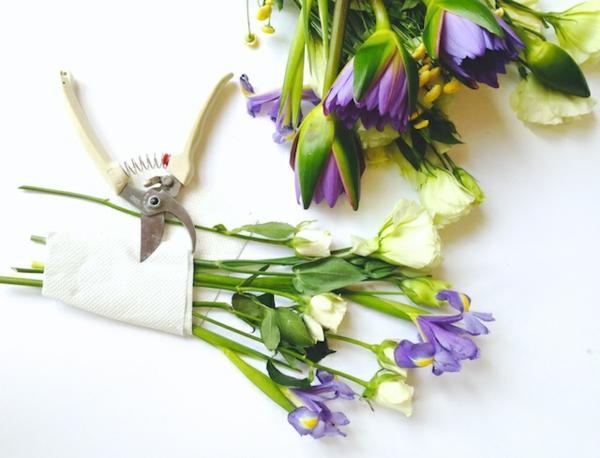 Blumen pressen Blumen auswählen und schneiden Vorbereitung